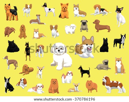 various small dog breeds poses