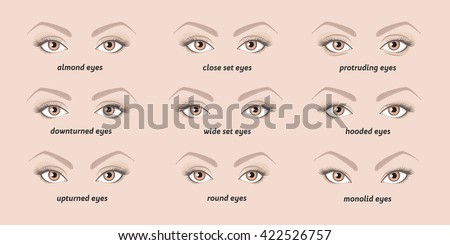 various types of  woman eyes