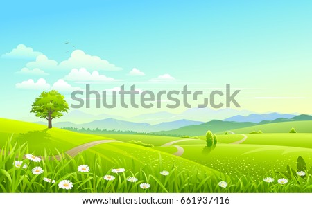 Vast green meadows across a jungle