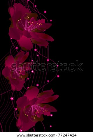 vector abstract red flowers on black background illustration