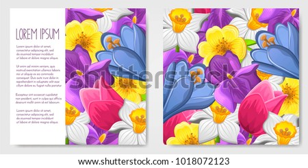 Spring Flower Background Download Free Vector Art Stock Graphics