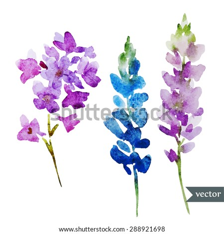 Vector Abstract Watercolor Flowers Isolated Object Card