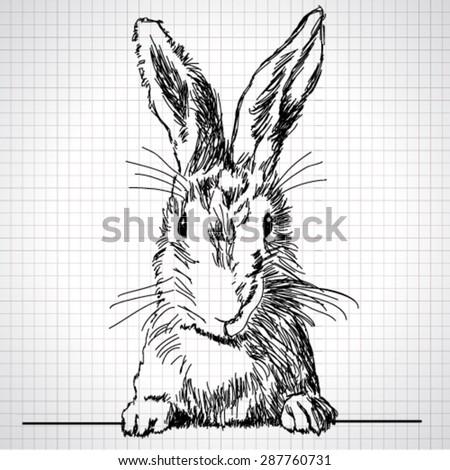 vector adorable hand drawn
