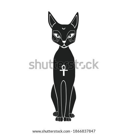 vector african egyptian cat