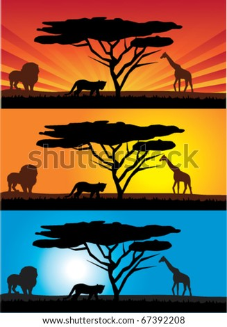 vector african landscape with animals