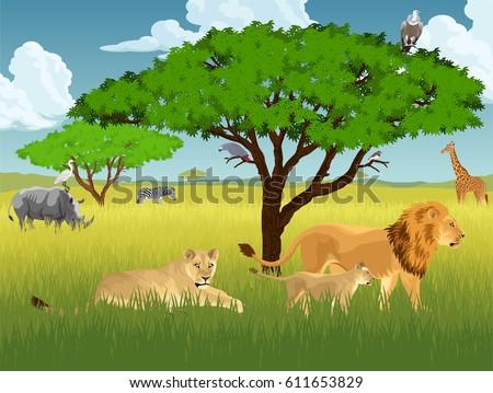 vector african savannah with