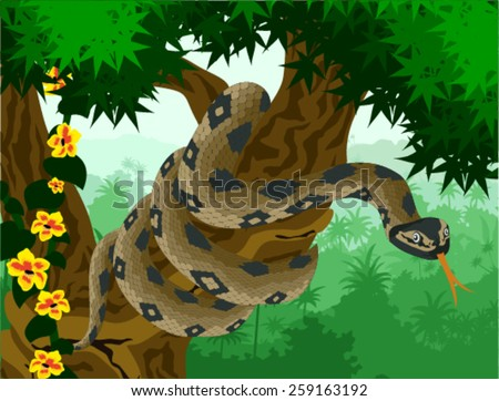 vector anaconda in amazon jungle