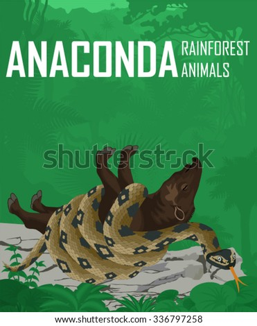 vector anaconda in amazon