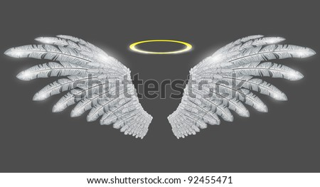 vector angel wings and halo