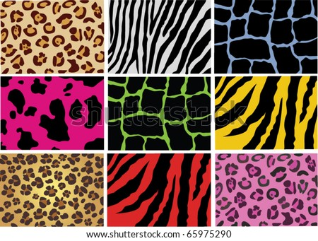 vector animal skin of different animals