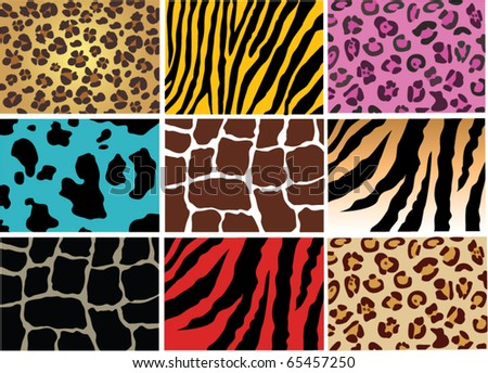 vector animal skin of different wild and domestic animals