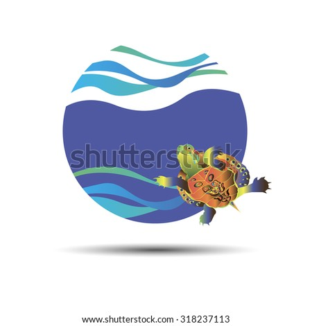 vector animal turtle