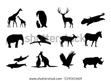 vector animals black