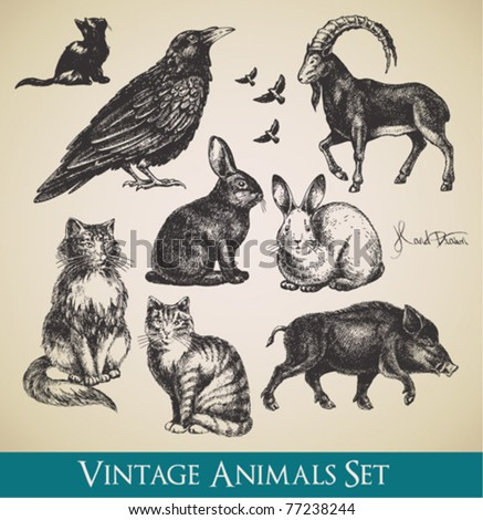 Vector animals set raven cats flying birds rabbits boar goat