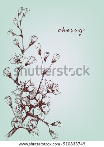 vector artistic flowers  cherry ...