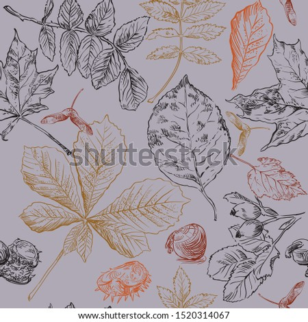 Vector autumn hand drawing seamless pattern with horse chestnut, hawthorn, rose hip, Rowan leaves outline on the grey background. Fall line art of foliage in different color. stock illustration