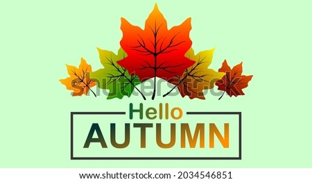 vector autumn leaves  cool