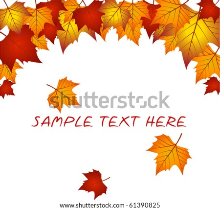 Vector autumn leaves  frame