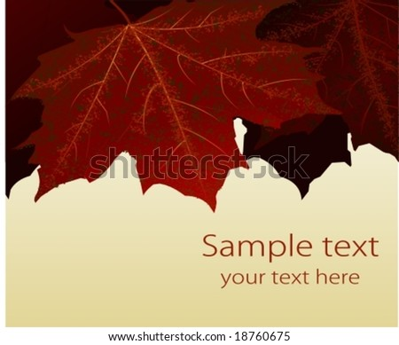 Vector: autumn leaves. Layered and grouped for easy editing. For a jpg-version, see my portfolio please (click on my name).