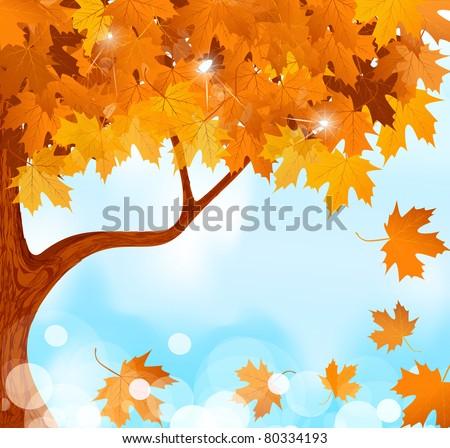 vector autumn tree maple leaves
