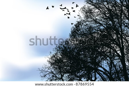 vector background a flock of