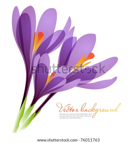 Vector background for design with spring flowers - stock vector