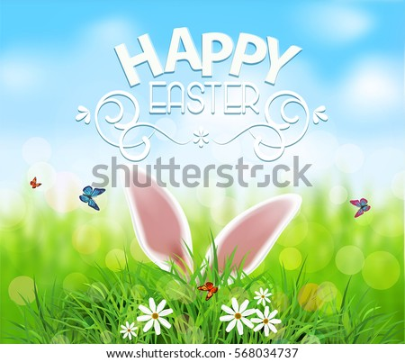 Vector background for Easter. Template. Rabbit ears sticking out of the grass .