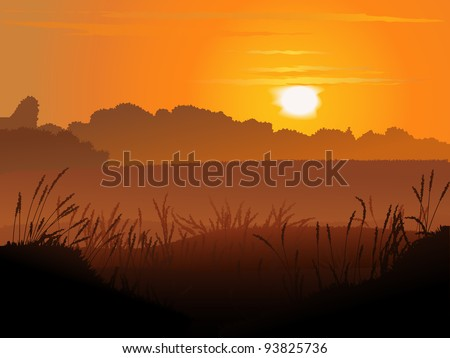 vector background of field at