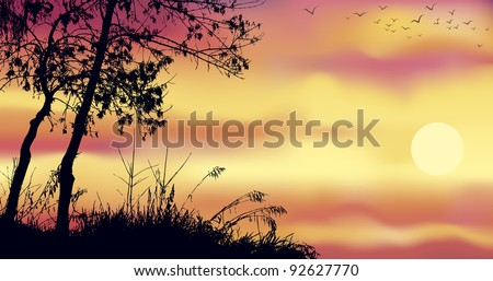 Vector background of gorgeous evening landscape. The dark silhouettes of trees against the red-yellow sky with the setting sun