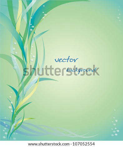 Vector background of underwater plants and bubbles.