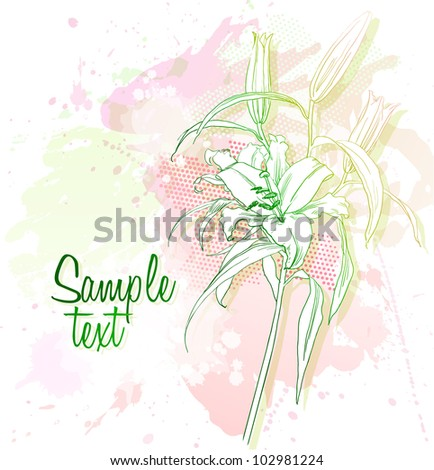 Vector background of watercolor lily