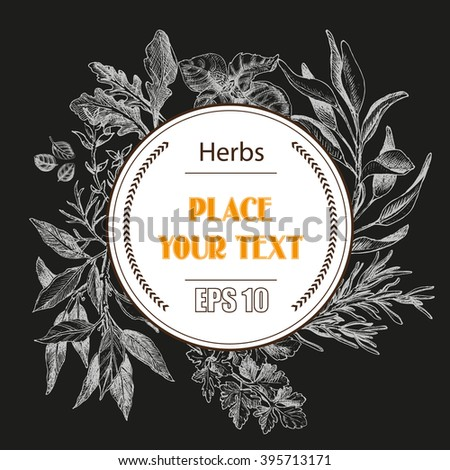 Vector background sketch herbs. Herbs - Bay leaf, dill, thyme, sage, rosemary, Basil, parsley, arugula #395713171