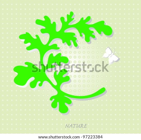 Vector background with a picture of a green leaf and white butterflies. / Tthe white butterfly.