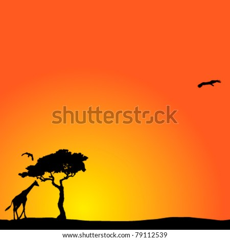 Vector background with African sunset
