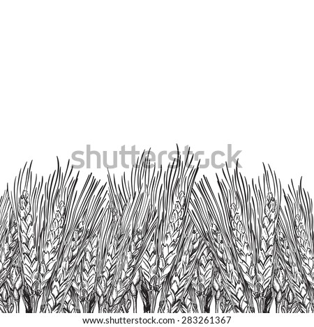 vector background with engraved