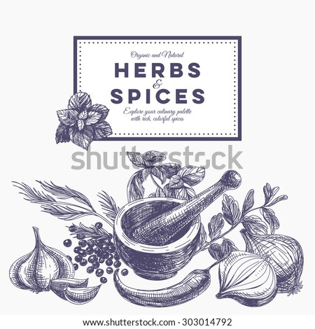 Shutterstock Vector background with hand drawn herbs and spices. Organic and fresh spices illustration.