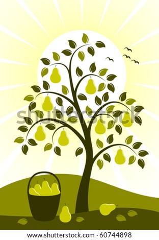 vector background with pear tree and basket of pears