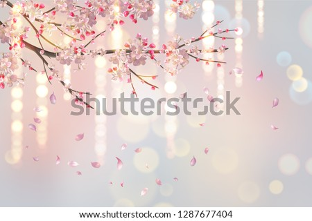 vector background with plum or