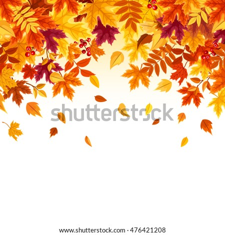 vector background with red