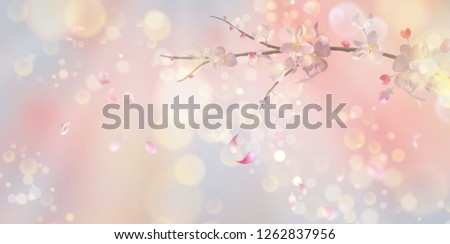Vector background with spring plum blossom. Blossoming branch in springtime with flying petals