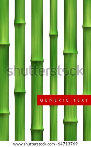 Vector Bamboo Background - stock vector