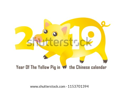 Vector banner with a illustration of funny pig, symbol of 2019 on the Chinese calendar, isolated. Yellow Earthy Porky, chine lucky. Element for New Year's design. Used for greetings, discounts.