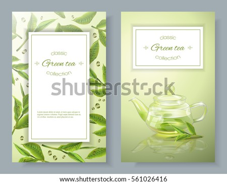 Vector banners with transparent teapot and green tea leaves. Design for packaging, drink menu, aromatherapy and tea products. With place for text.