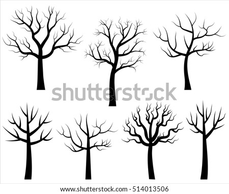 6031281285 furthermore 309559880 Shutterstock additionally Search likewise Silhouette in addition  on scary creepy spiders huge