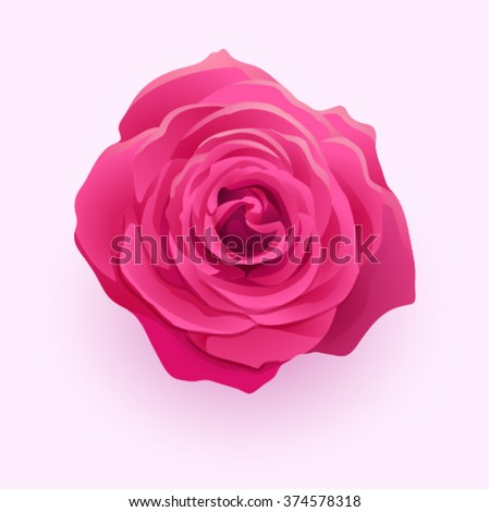 vector beautiful flower deep