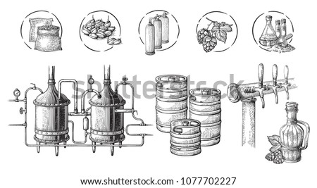 Vector beer infographics with illustrations of brewery process. Ale producing design. Hand sketched lager production scheme. Stock photo ©