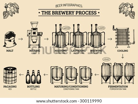 Vector beer infographics with illustrations of brewery process and equipment. Ale producing design. Hand sketched lager production scheme. Stock photo ©
