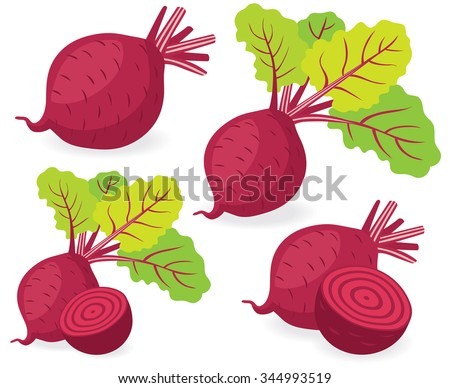Vector beet. Red beetroot with leaves whole and cut isolated on white background, collection of vector illustrations
