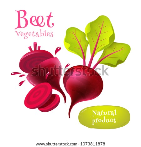Vector beets isolated on background. Red beetroot whole, cut, sliced