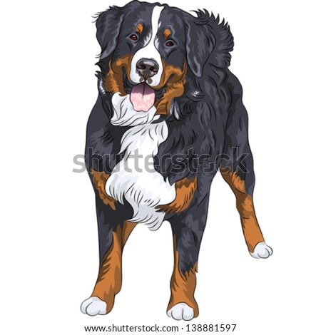 vector big cute dog breed
